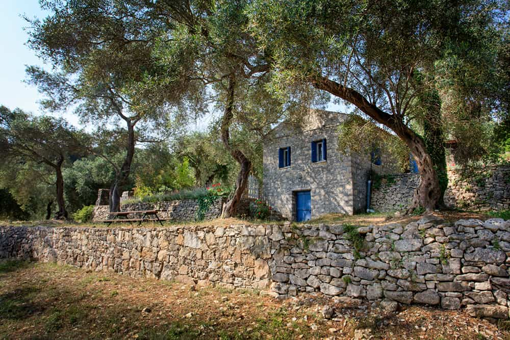 Stone House Located In An Olive Grove
